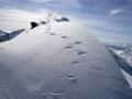 trace_neige